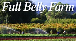 Full Belly Farm - Organic Vegetables, Fruit & Wool
